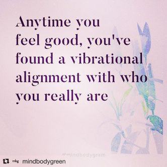 Image result for anytime you feel good you found vibrational alignment with who you are